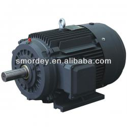 2~8 Pole SM series three phase asynchronous motor for sale