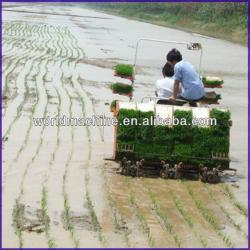 481 high efficiency eight lines rice transplanter machine