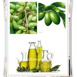 6yl-130A Vegetable Olive Oil Cold Press Machine