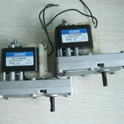 BBQ Electric Motor