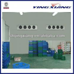 BV certificated refrigerated warehouse /cold storage plant