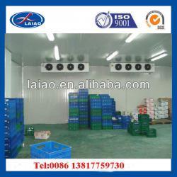cold room ( cold storage room,walk in freezer,chiller room,cooling room )