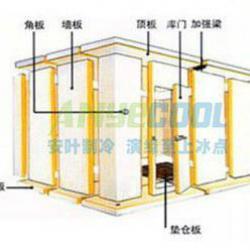 coldroom (cold storage, walk in freezer room)