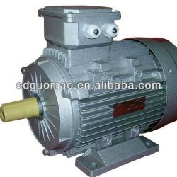 Different Voltage Three Phase Electric Motor