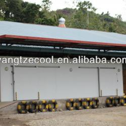 Large capacity Vegetable/Flower Cold storage with 200Tons Capacity