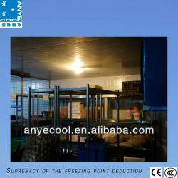 modular cold room,cold storage,blast freezer,cooling room
