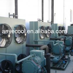 Refrigeration equipment for fish,vegetable,beef,meat,pork.