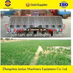 rice seedling planting for rice transplanter machine