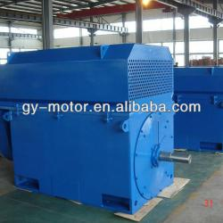 Russia Gost High voltage motor 1000KW