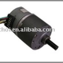 step gear motor