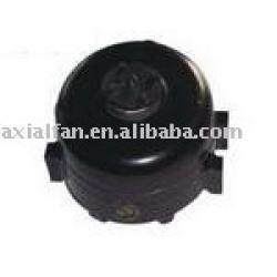 Unit bearing motor, GE motor