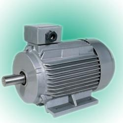 Y2 Three-Phase Induction Motor
