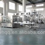 Automatic Filling Machine/Automatic Packing Machine-