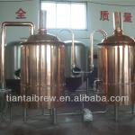 800L small beer brewery-