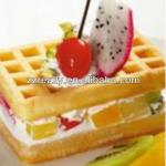 1 plate and 2plates/hot sale square shape industrial waffle maker with CE