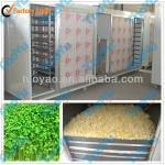 Commerical Bean Sprout Machine (SMS: 0086-15890650503)-