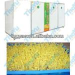 Automatic bean sprouts machine/black bean sprouts growing machine SMS:0086-15238398301-