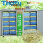 Advanced Mung Beans Sprouter Machine to grow mung bean seedling-