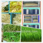Mini Fodder Sprout System for farm in China-
