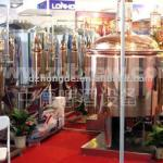 sell 500L beer equipment-