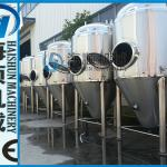 Stainless steel beer brewing equipment(CE certificate)