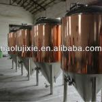 Fermentation tank/brewery equipment for pub, resturant