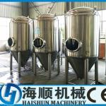2000L Stainless Steel(S.S) Conical Beer fermentation tank(CE certification)