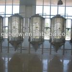 CG-300L of Copper brewery equipment/plant/machine