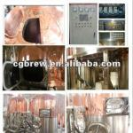 CG-200L of Pub beer brewing machine