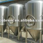 CG-1000L of Pub beer brewery equipment