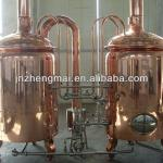 hotel luxury series beer brewery equipment