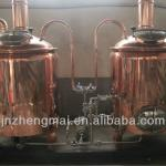 300L luxury hotel beer brewing equipment
