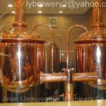 500L beer brewery equipment,brewery equipment