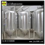 Hot Product -20hl beer brewing fermenter