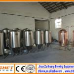 200l micro brewing equipment