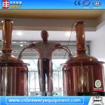 Hotel/Pub Brewery Equipment 500L