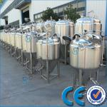 Stainless Steel Jacket Concial Beer Fermentation Tank