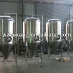 stainless steel conical beer fermenter / beer fermentor / stainless steel fermentation tank