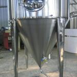 jacketed agitated reactor-jacketed fermenters made of stainless steel