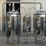 200L micro brewery new type beer brewing equipment