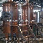 500L hotel small beer equipment or micro brewery equipment