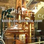 500L hotel beer equipment, microbrewery, brewing system