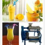 Mango juice processing machine-