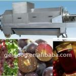 High Capacity Grape Juice Extractor-