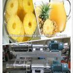 pineapple pulping machine-