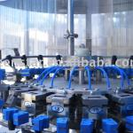 Automatic Bottle Rinsing Machine-