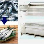 Low cost all tainless steel the fish scales take off machine-