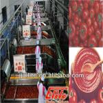 tomato sauce production line-