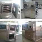 freeze dryer machine/vacuum freeze dryer/fruit and vegetable dryer-