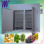 Industrial Food Dehydrator Machinery 220V-